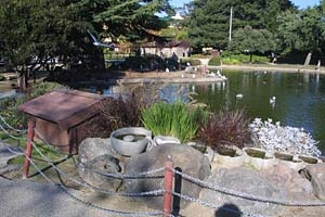 Duck Island Pond at San Lorenzo Park