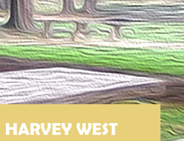 Harvey West Park Icon