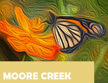 Moore Creek Icon