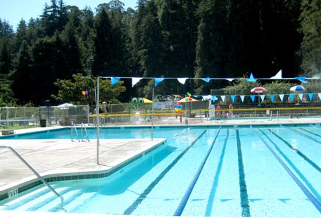 Harvey West Pool