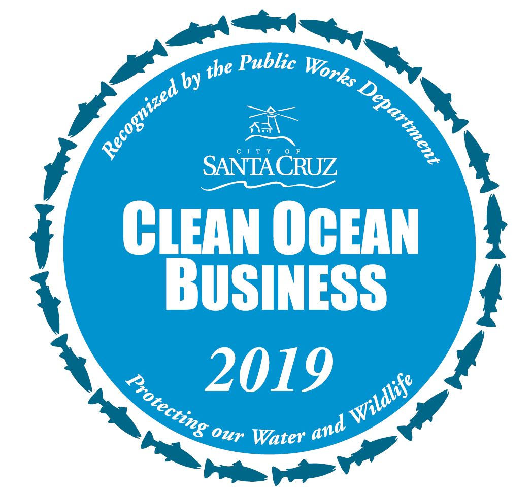 clean ocean business 2019