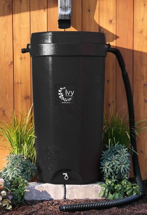 Black Ivy rain barrel 100% recycled plastic